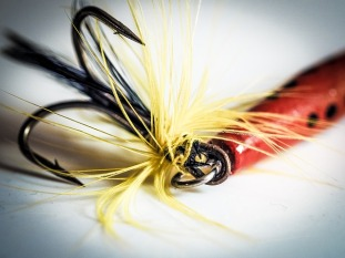 Fish Hook Pixabay